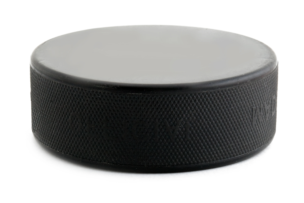 hockey puck portion size