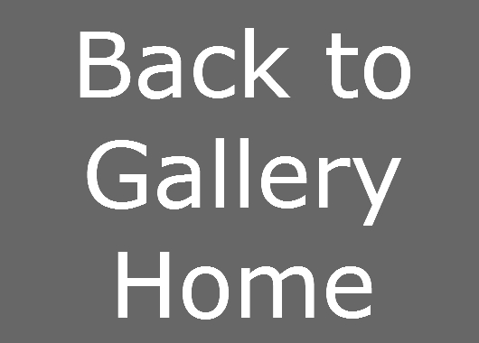 back to gallery home