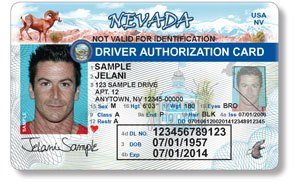 sample nevada drivers license for immigrant in the country illegally
