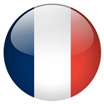france flag button